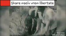 Anunț istoric pentru REPUBLICA SOCIALISTĂ ROMÎNIA by Mitică